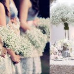 floral friday: delicate baby's breath