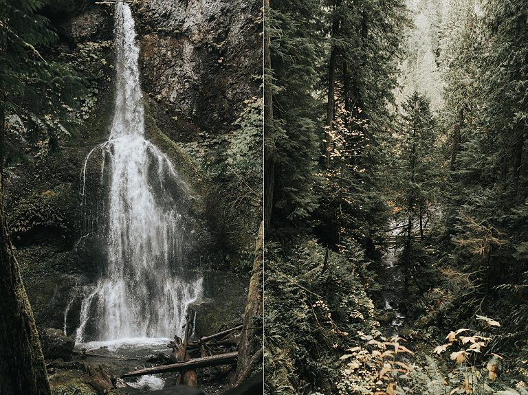 Marymere Waterfall Engagement Session in Olympic National Park